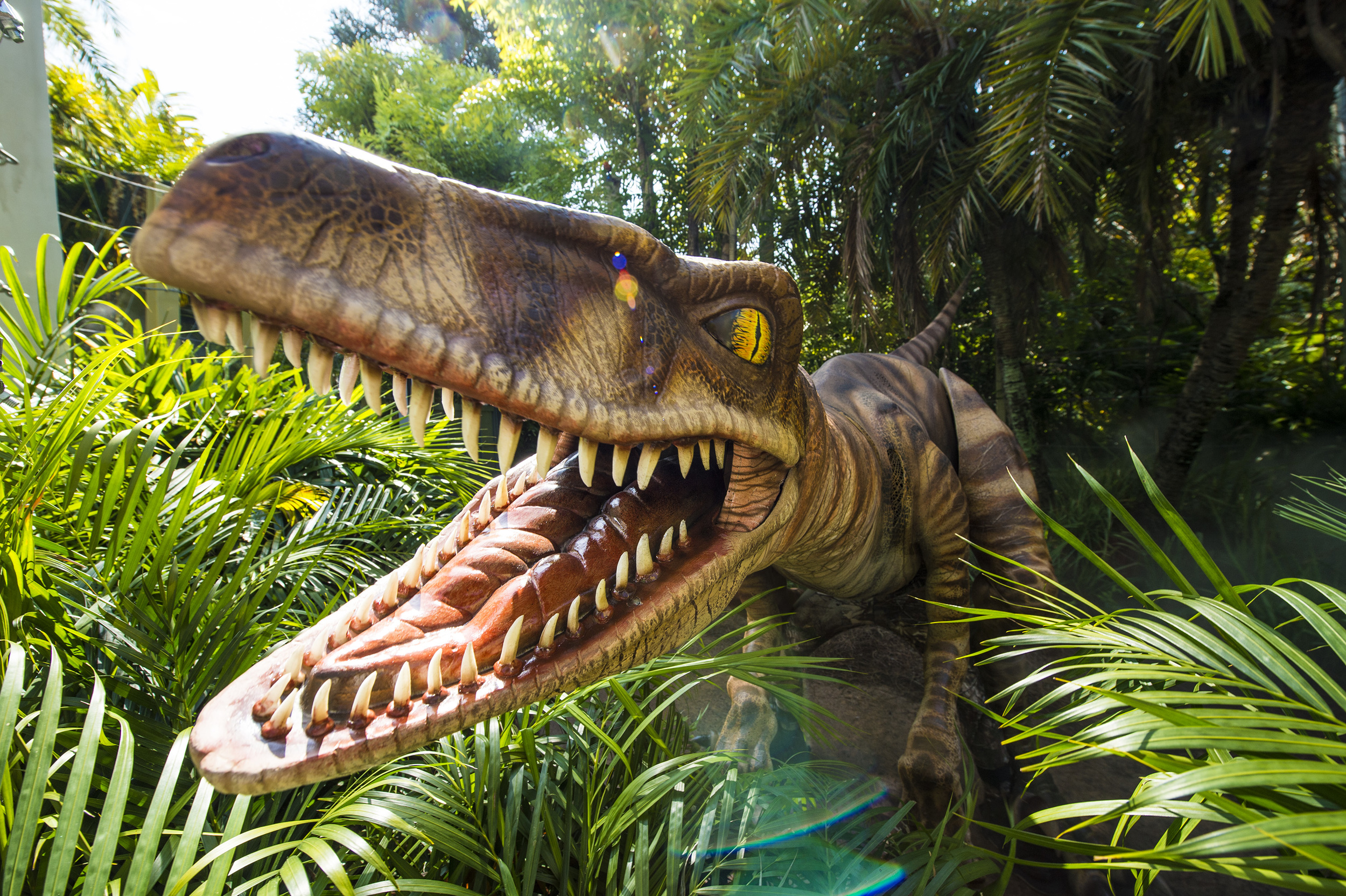 Raptor Encounter in Jurassic Park. Image credit: Universal Orlando Resort.
