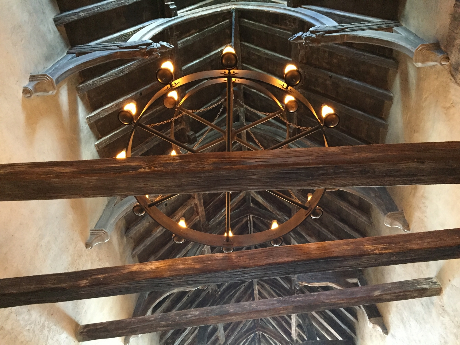 Vaulted Ceiling in the Leaky Cauldron