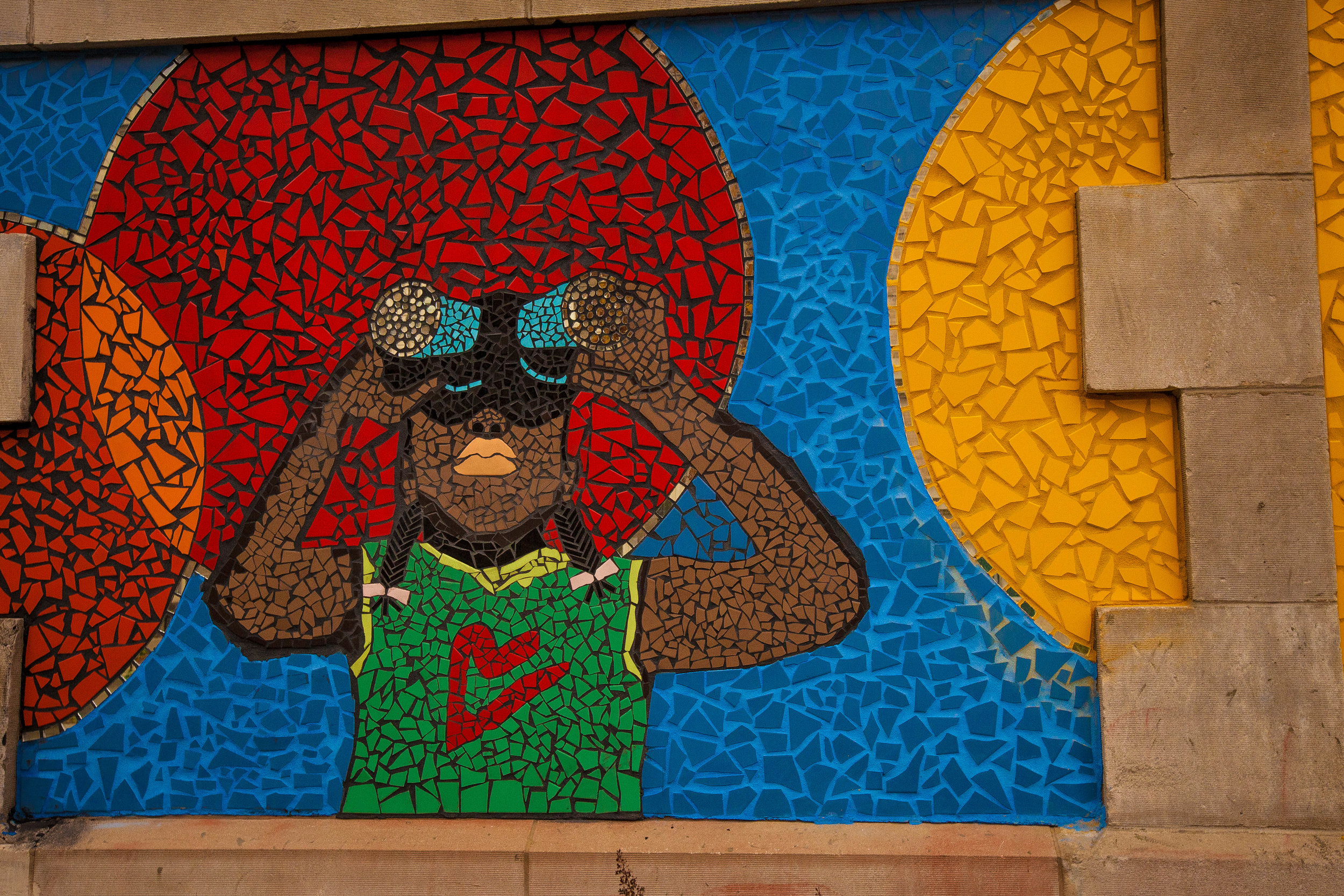 ANDRE PHOTOGRAPHIC_GREEN STAR MURALS-0046.jpg
