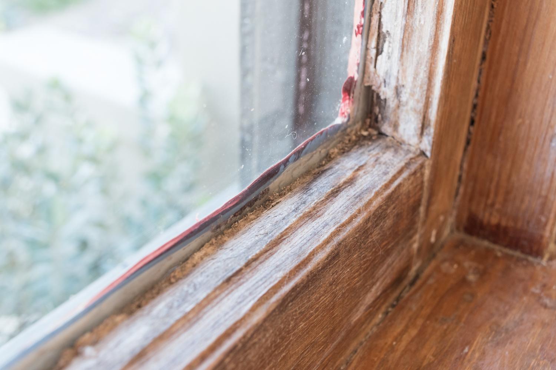 woodwork damage-0226.jpg