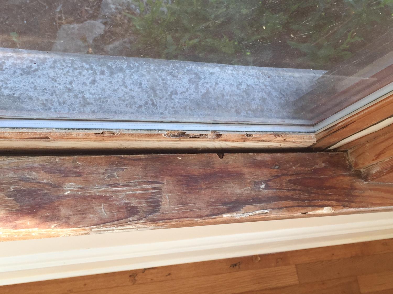 woodwork damage-1064.jpg