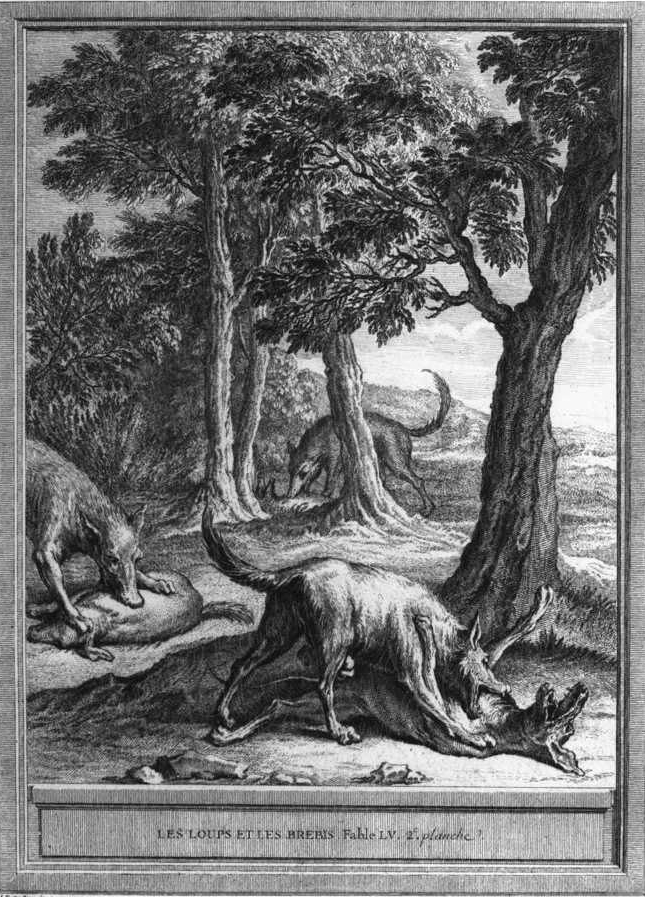 Original Antique Engraving - Wolves And The Sheep