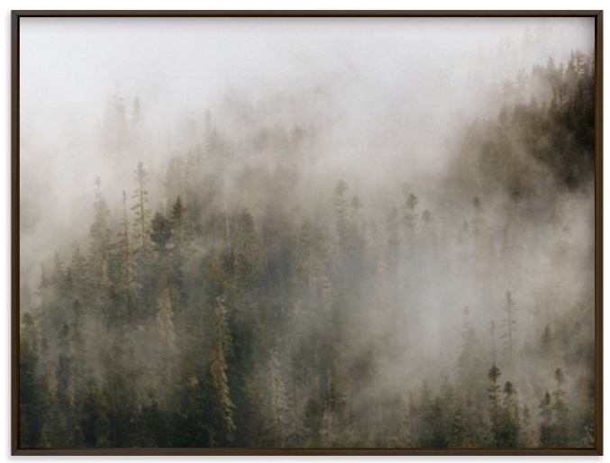 "MInted ""PACIFIC NORTH FOG"" - PHOTOGRAPHY LIMITED EDITION ART PRINT BY POCKETS OF FILM"