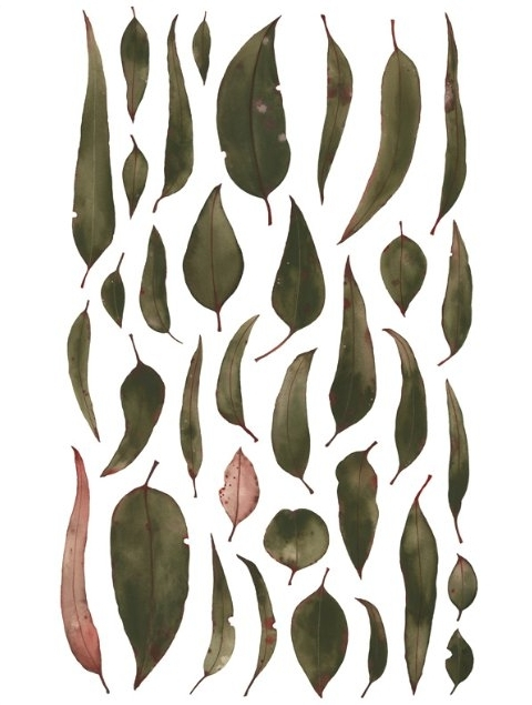 """EUCALYPTUS LEAVES"" - PAINTING LIMITED EDITION ART PRINT BY NATALIE RYAN."