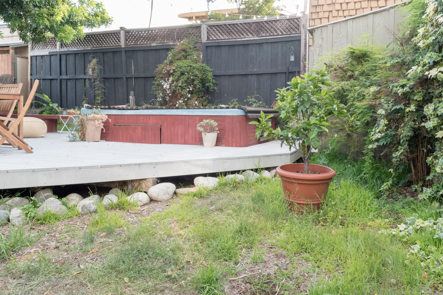 The Gold Hive backyard before