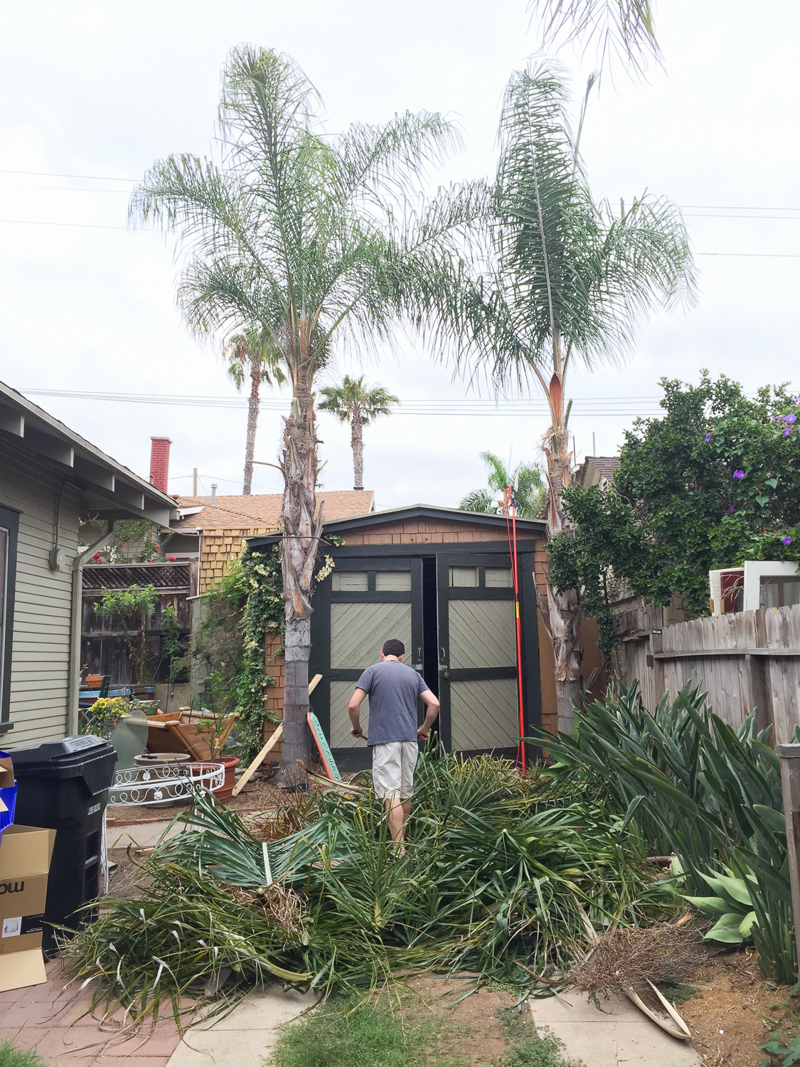 How We cleared Our Yard for Free-1265.jpg