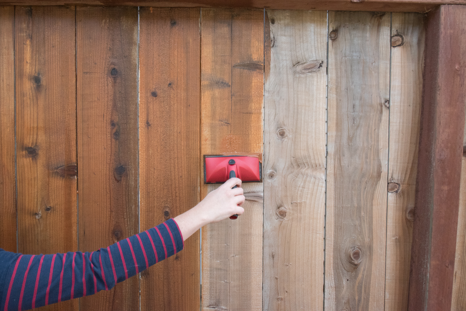 The Gold Hive How to Refresh a Fence - Powerwash-0189.jpg