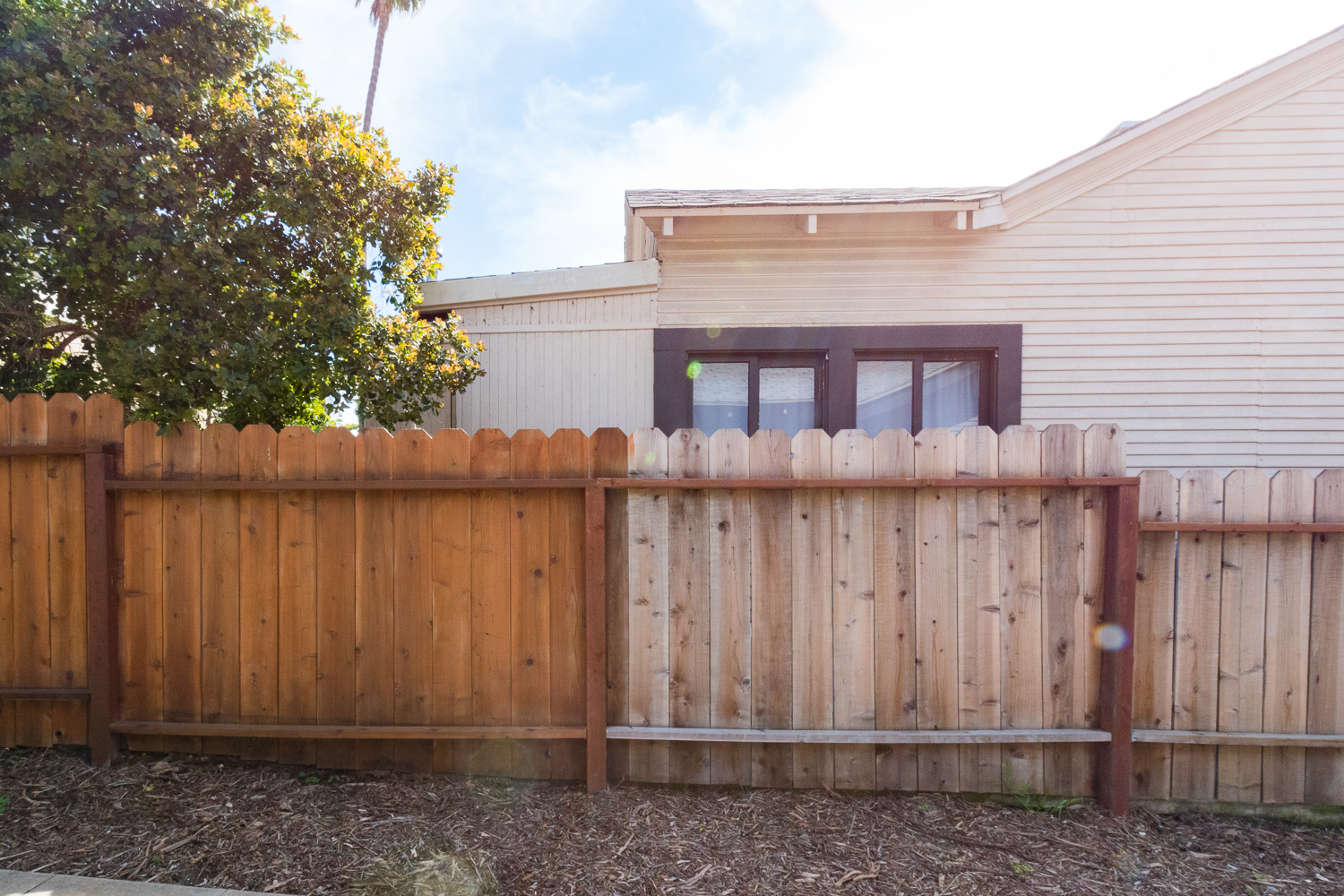 The Gold Hive How to Refresh a Fence - Powerwash-3.jpg