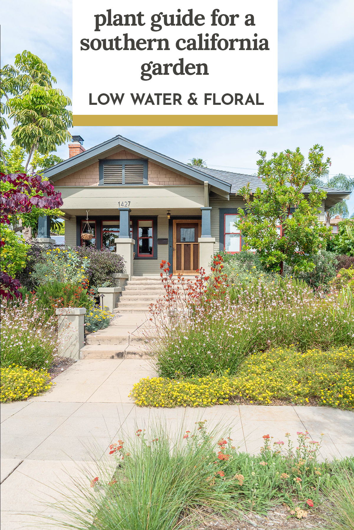 The Plant Guide For Our Southern California Low Water Front