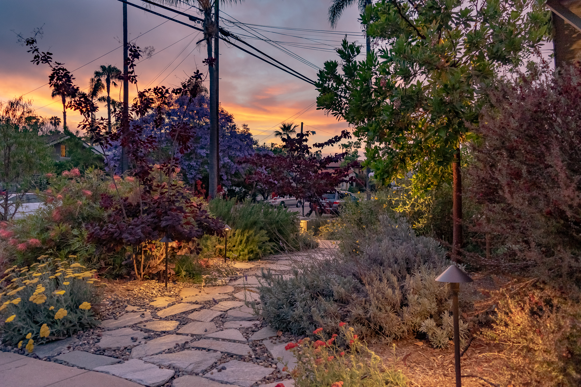 The Gold Hive Landscape Lighting Kichler How To California Garden Front Yard-0266.jpg