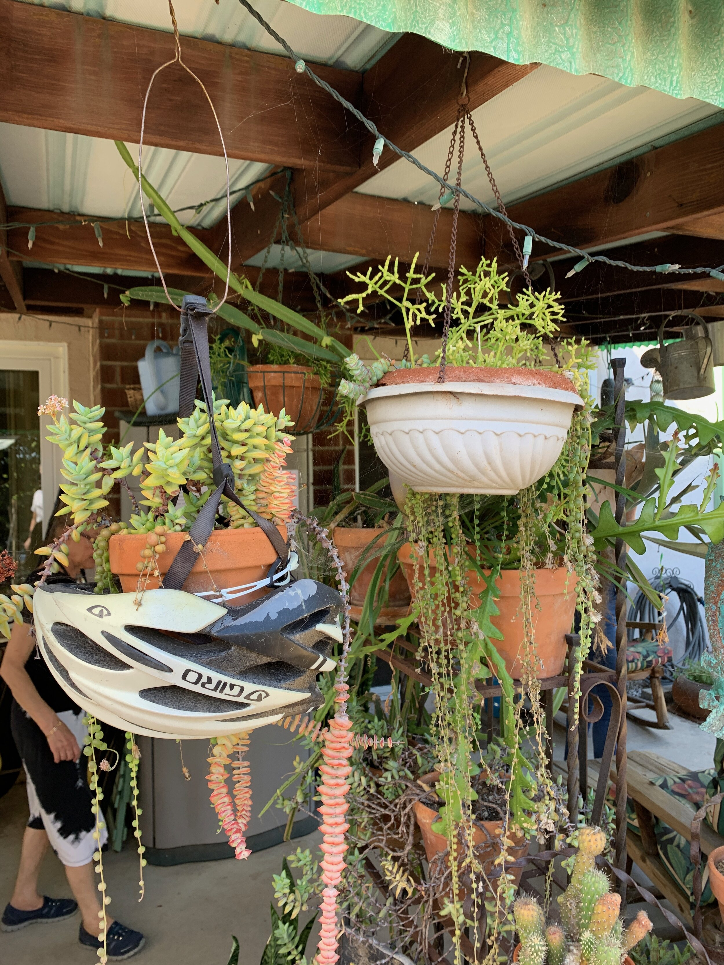 The Gold Hive Green Homes Tour Upcycled Helmet for Planter