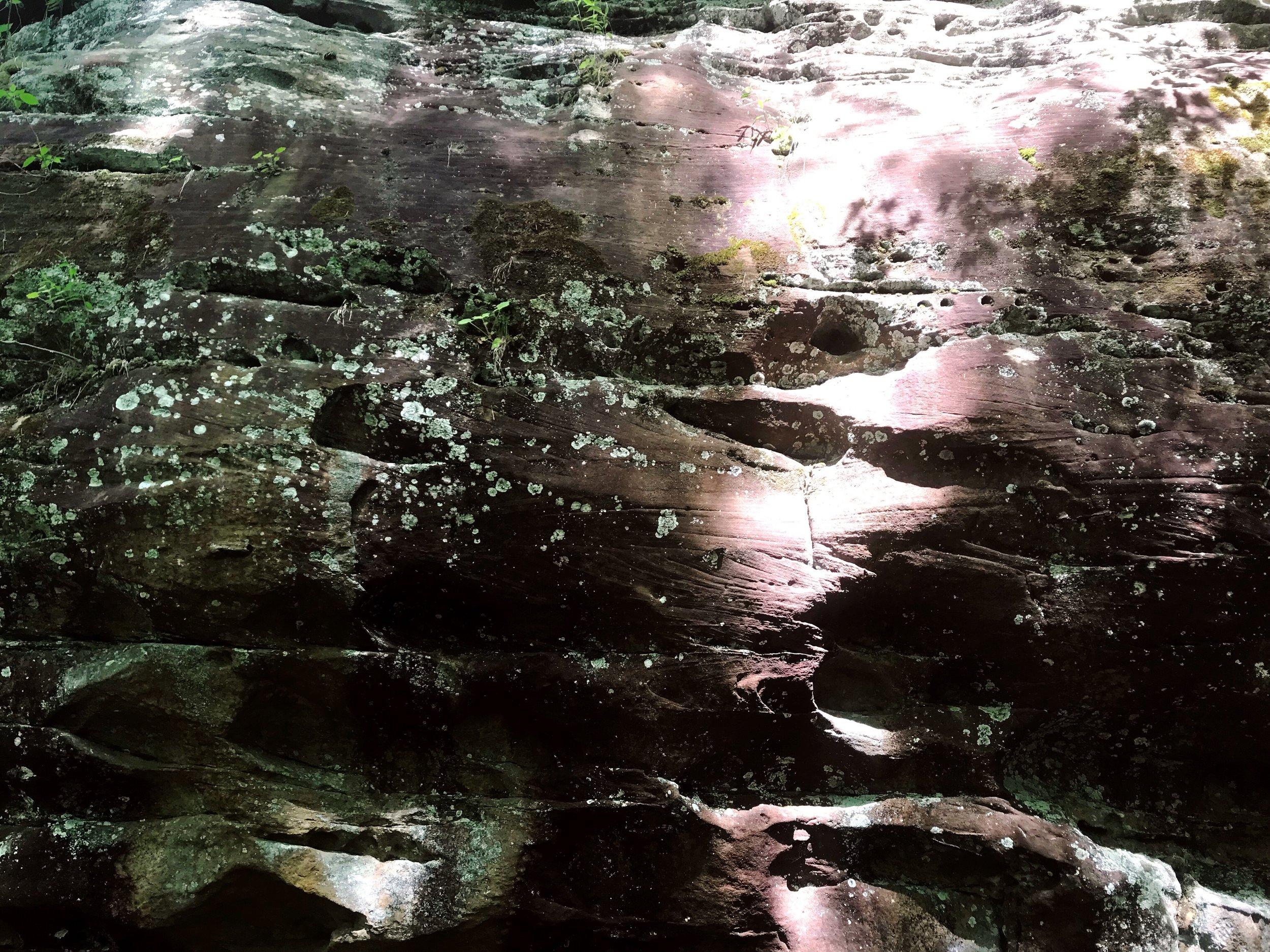 fern-clyffe-waterfall-11.JPG