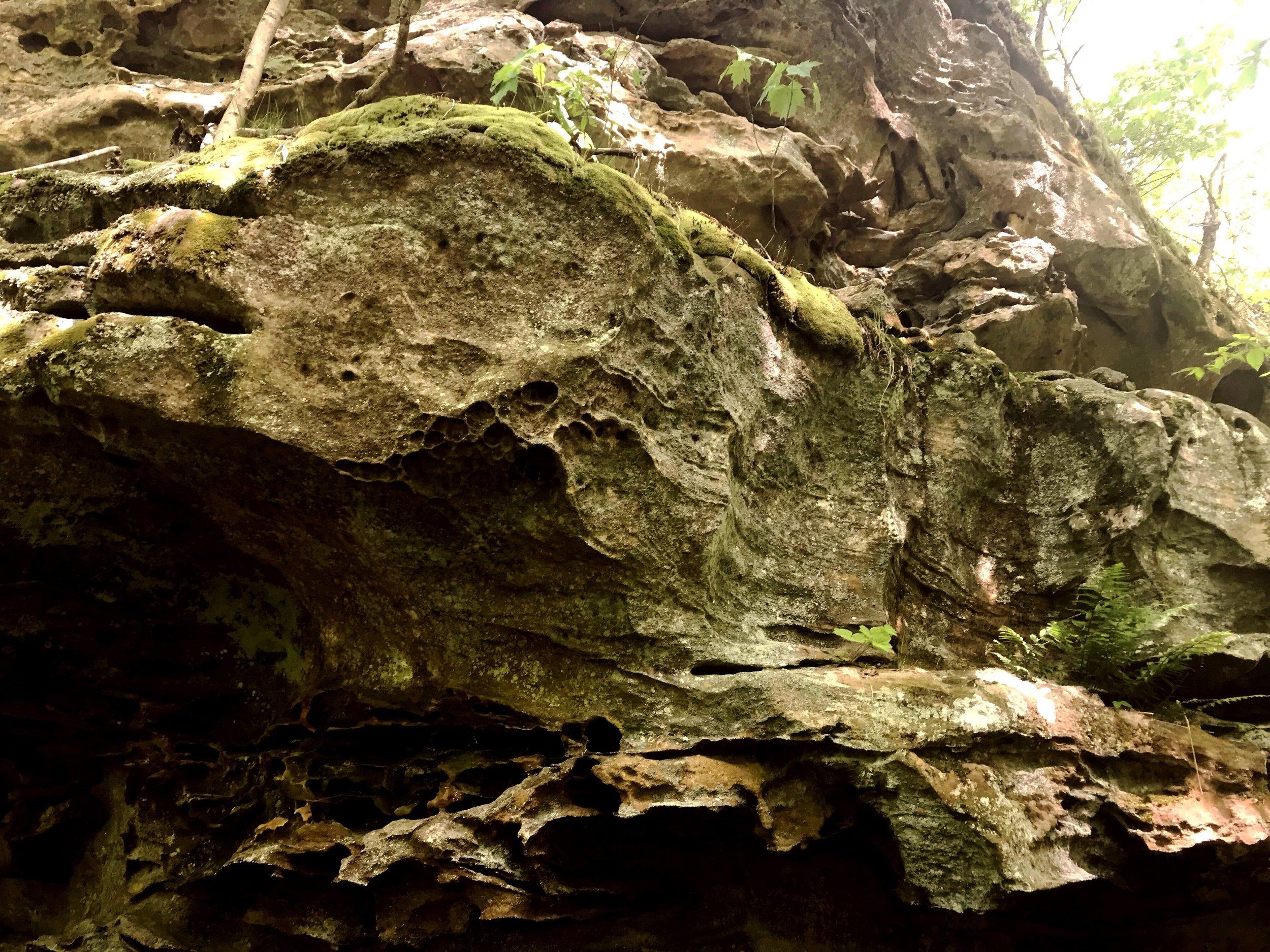 fern-clyffe-waterfall-2.JPG