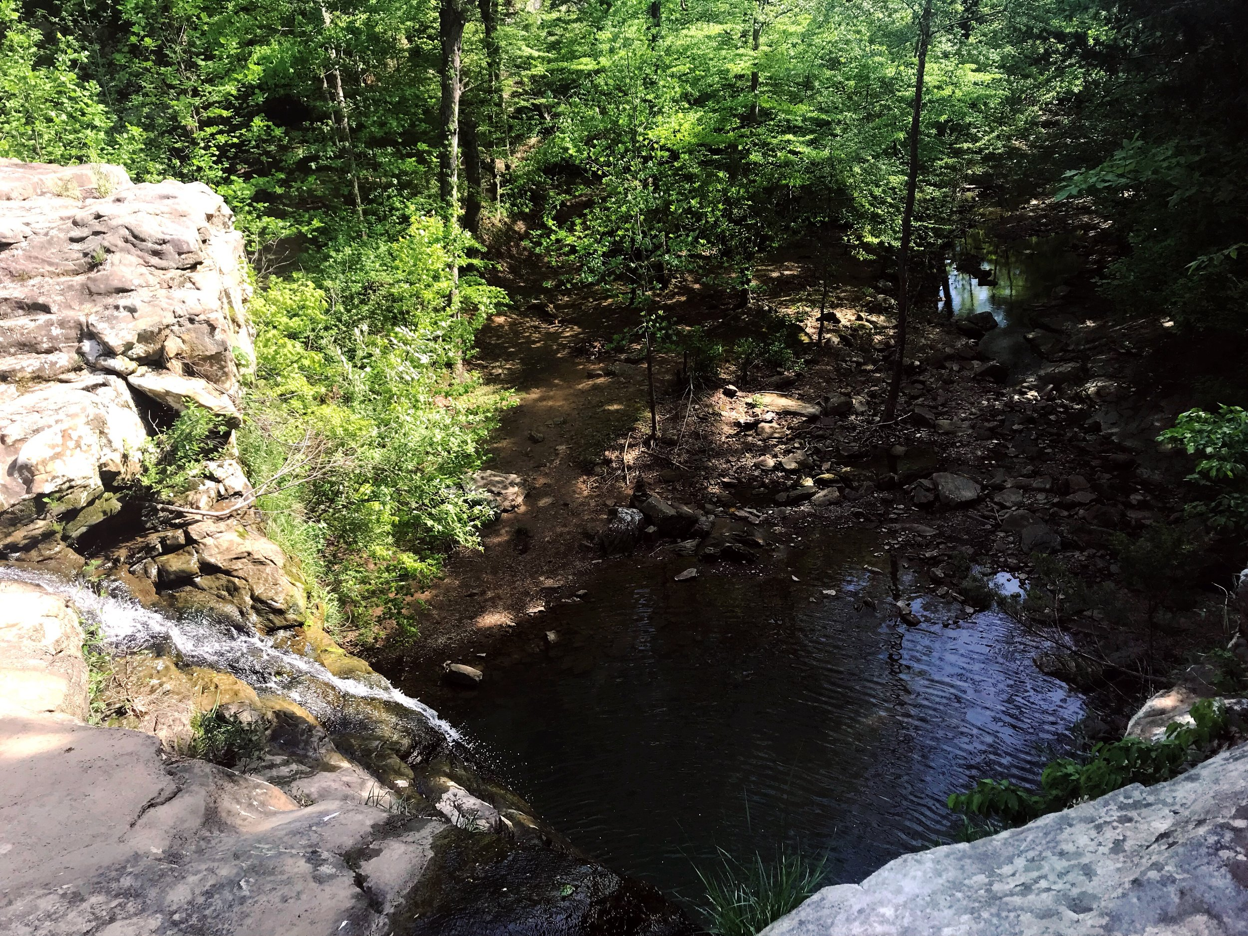 fern-clyffe-waterfall-1.JPG