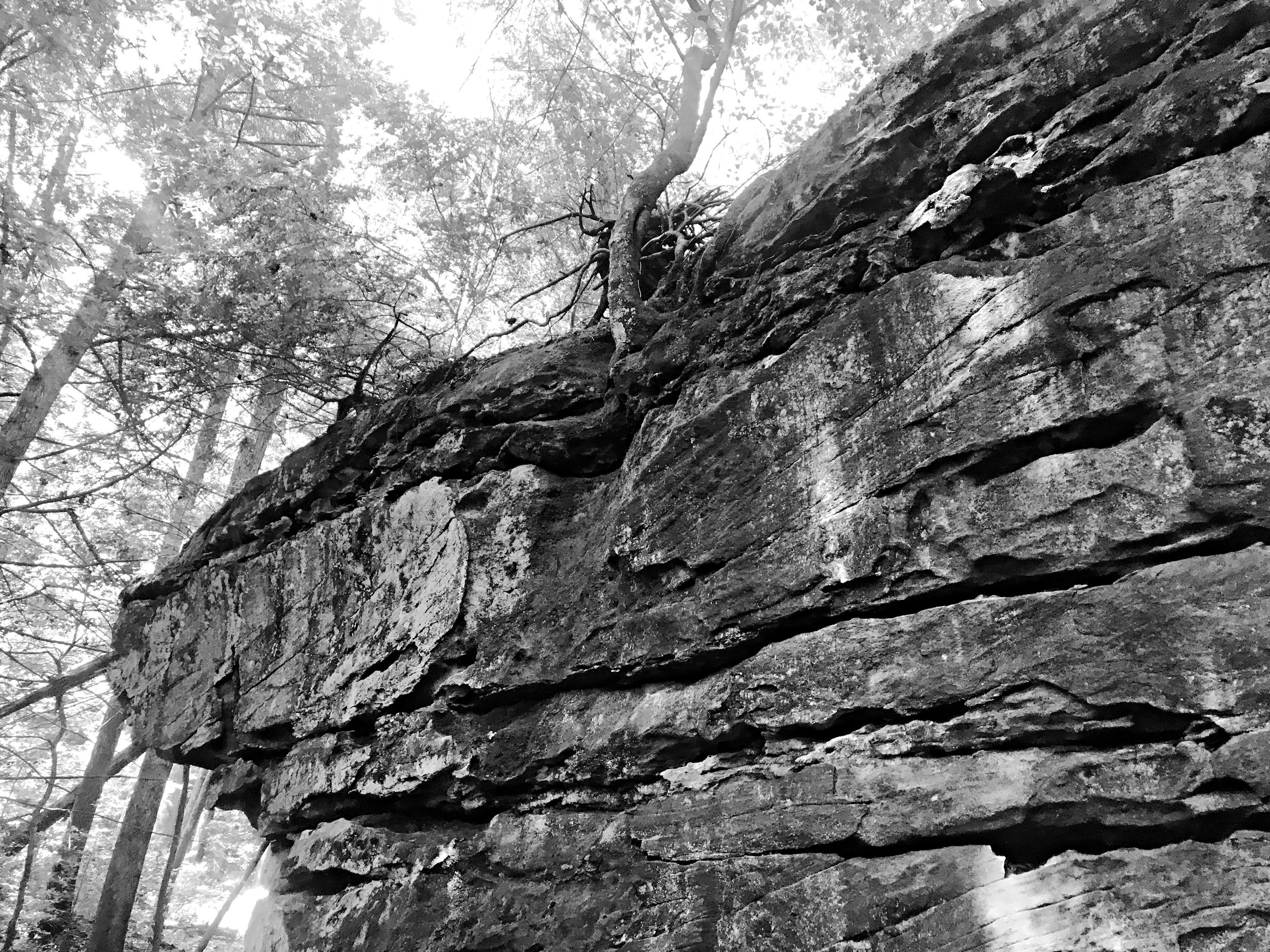 obed-wild-and-scenic-river-boulder-field-tennessee_0266.JPG