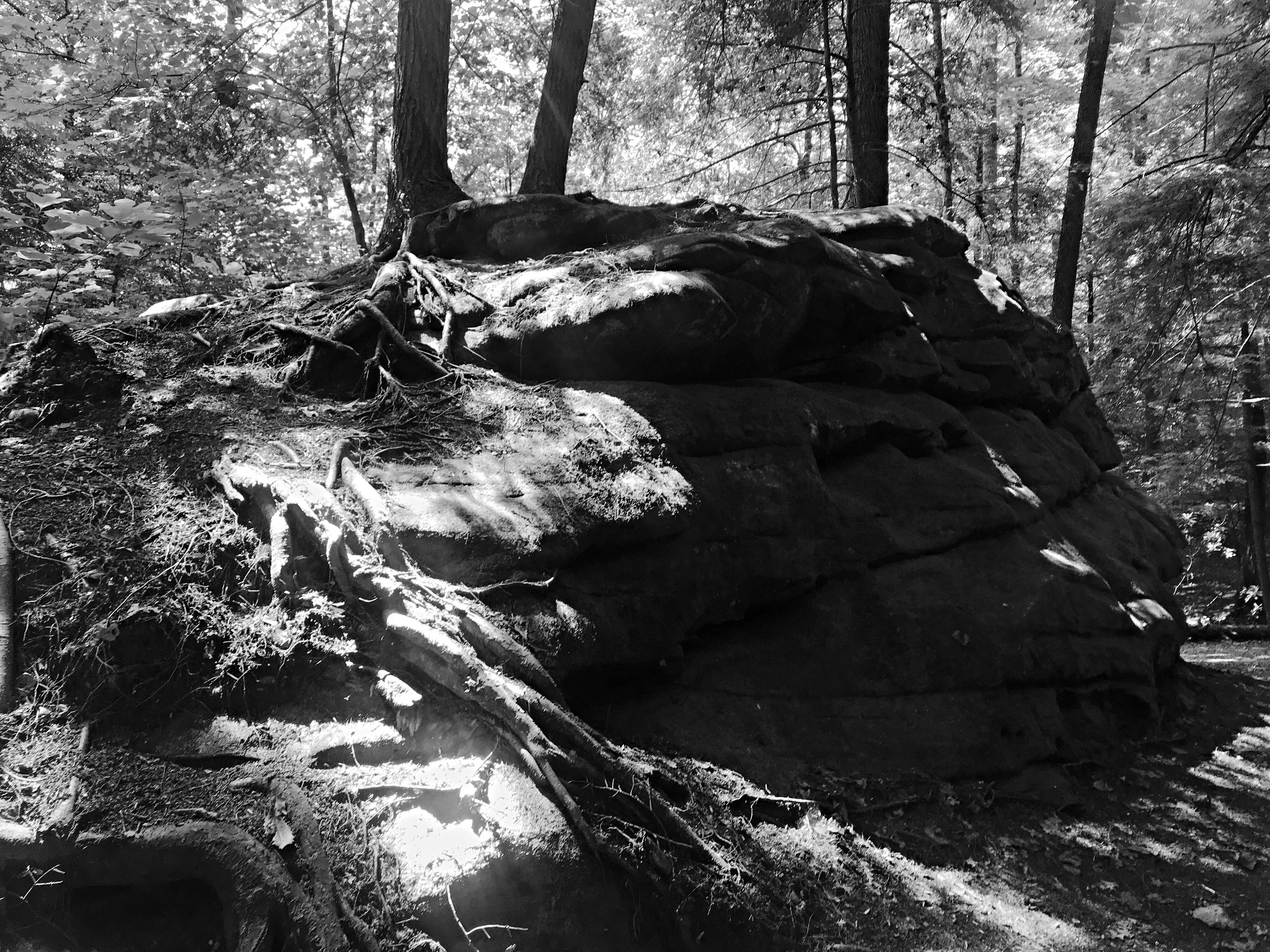 obed-wild-and-scenic-river-boulder-field-tennessee_0264.JPG