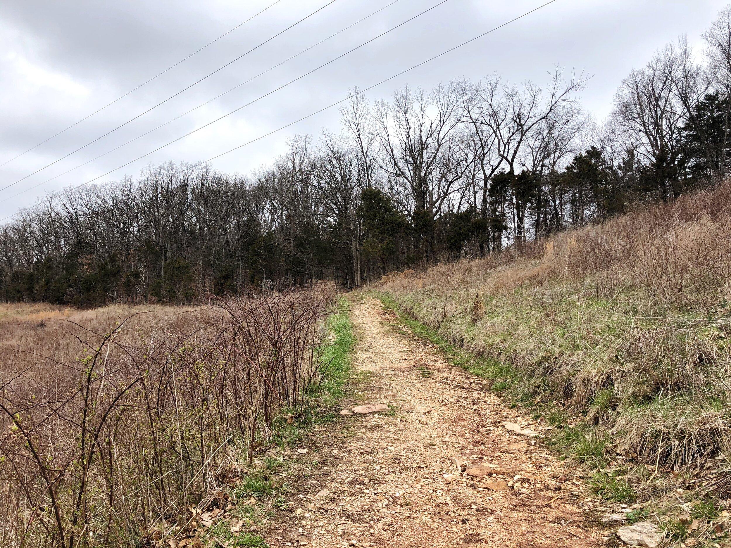 mastadon-state-park-limestone-hill trail0554.JPG