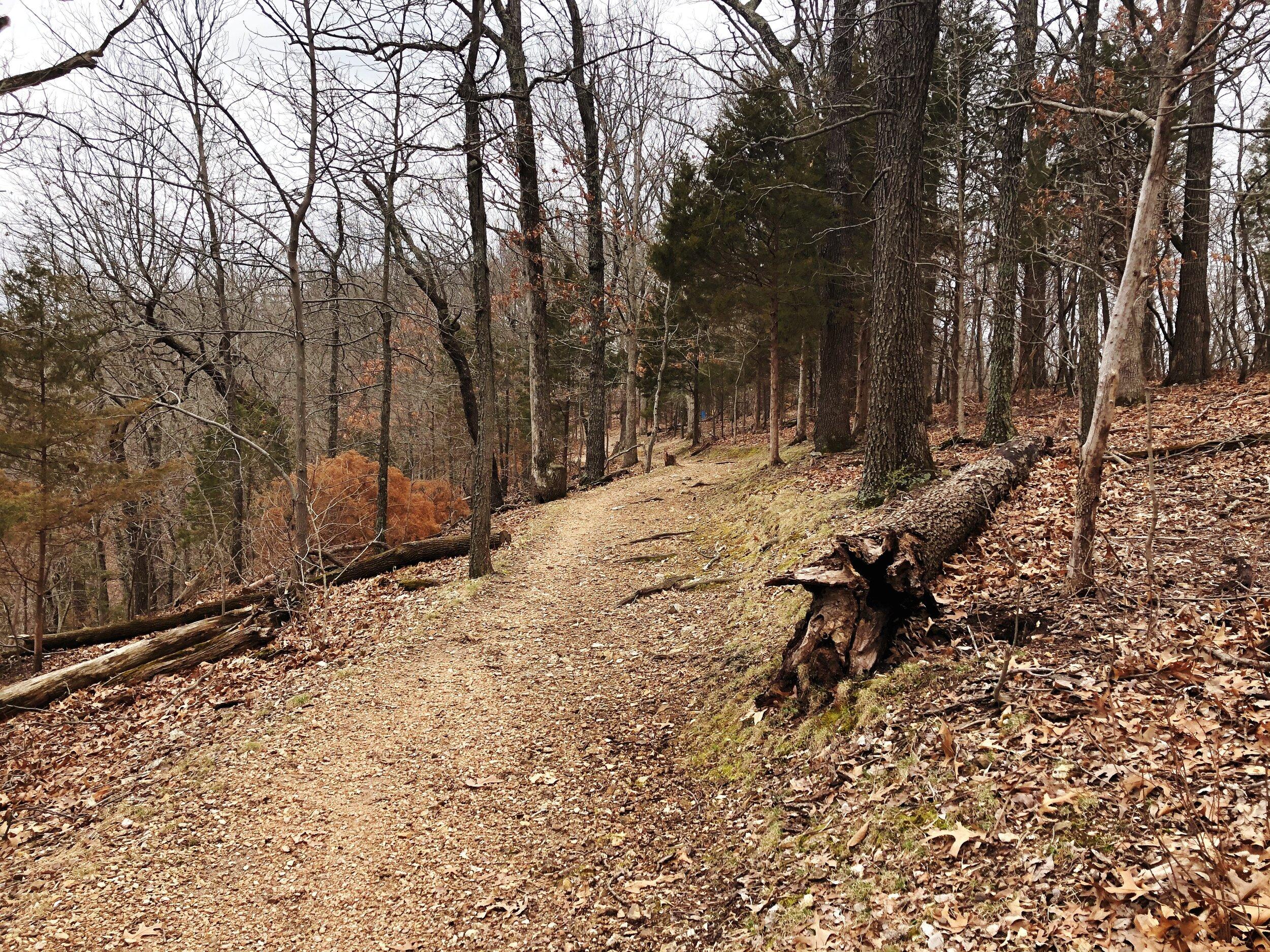 mastadon-state-park-limestone-hill trail0552.JPG