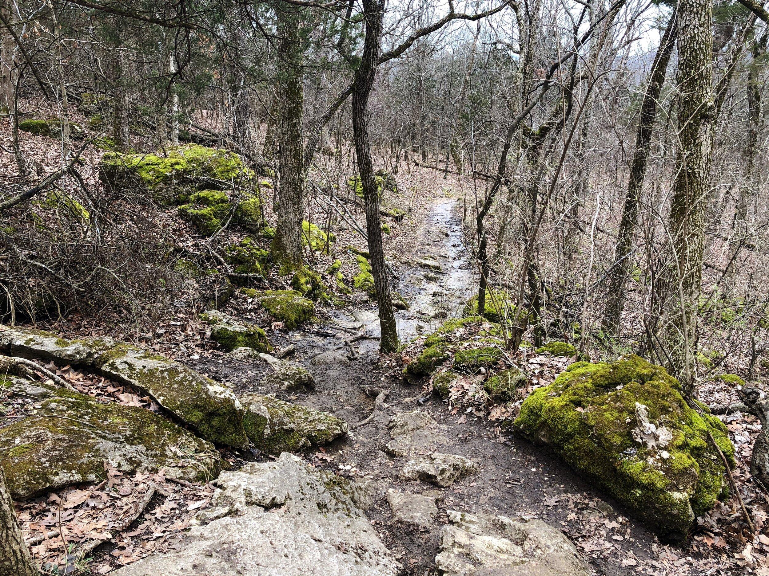 mastadon-state-park-limestone-hill trail0551.JPG