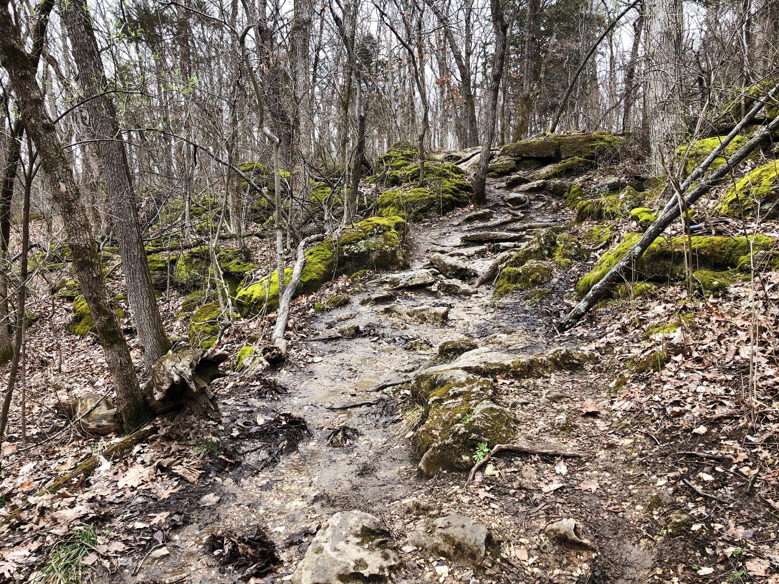 mastadon-state-park-limestone-hill trail0549.JPG