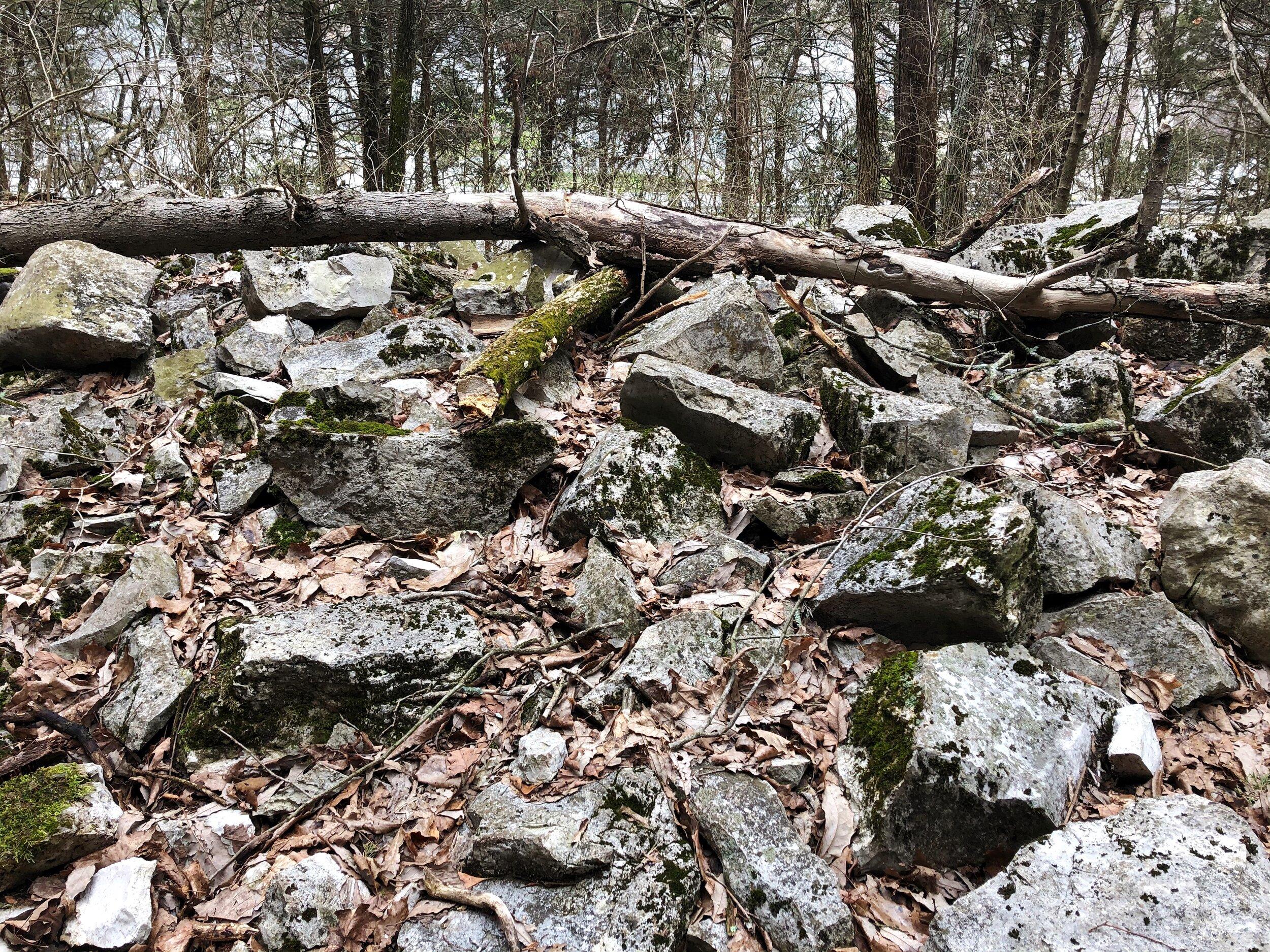mastadon-state-park-limestone-hill trail0545.JPG