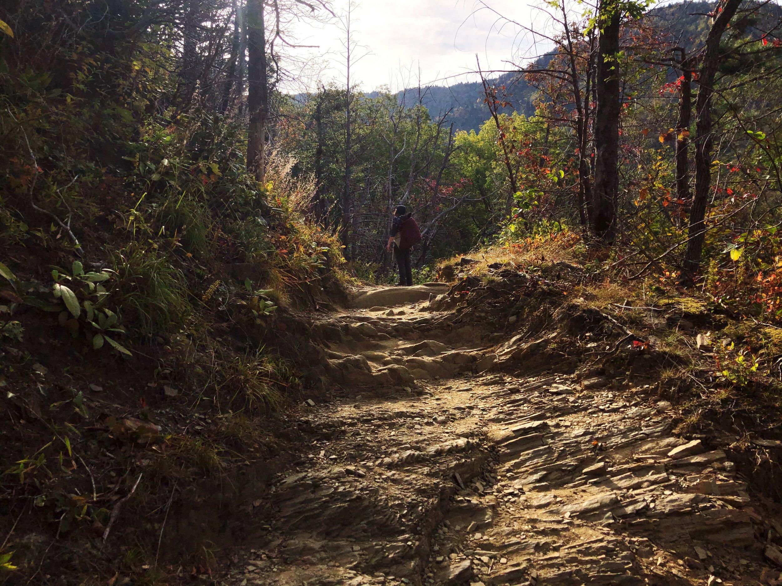 mount-leconte-rainbow falls trail-great-smoky-mountains-gatlinberg-tennessee0427.JPG