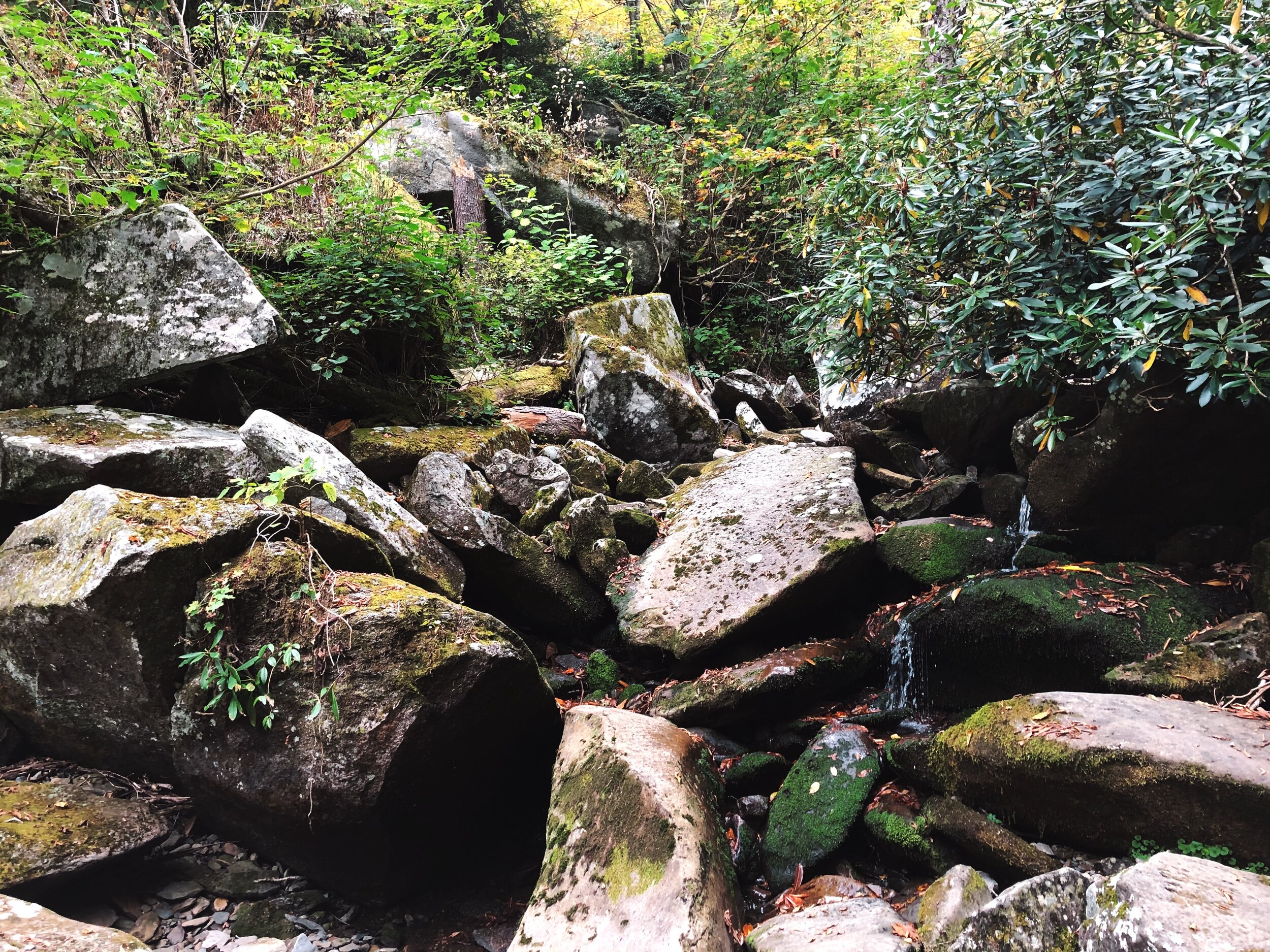 mount-leconte-rainbow falls trail-great-smoky-mountains-gatlinberg-tennessee0435.JPG