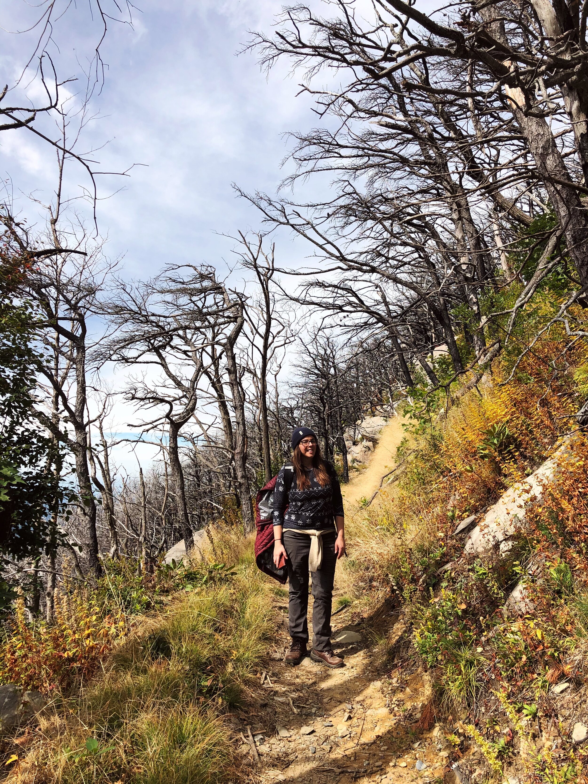 mount-leconte-rainbow falls trail-great-smoky-mountains-gatlinberg-tennessee0443.JPG