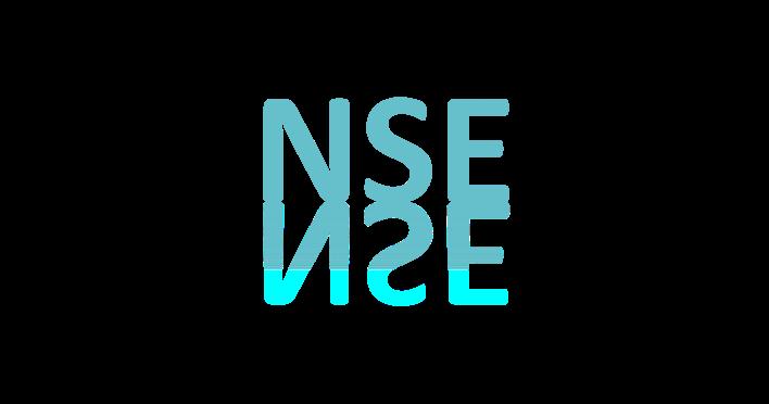 NSE.png
