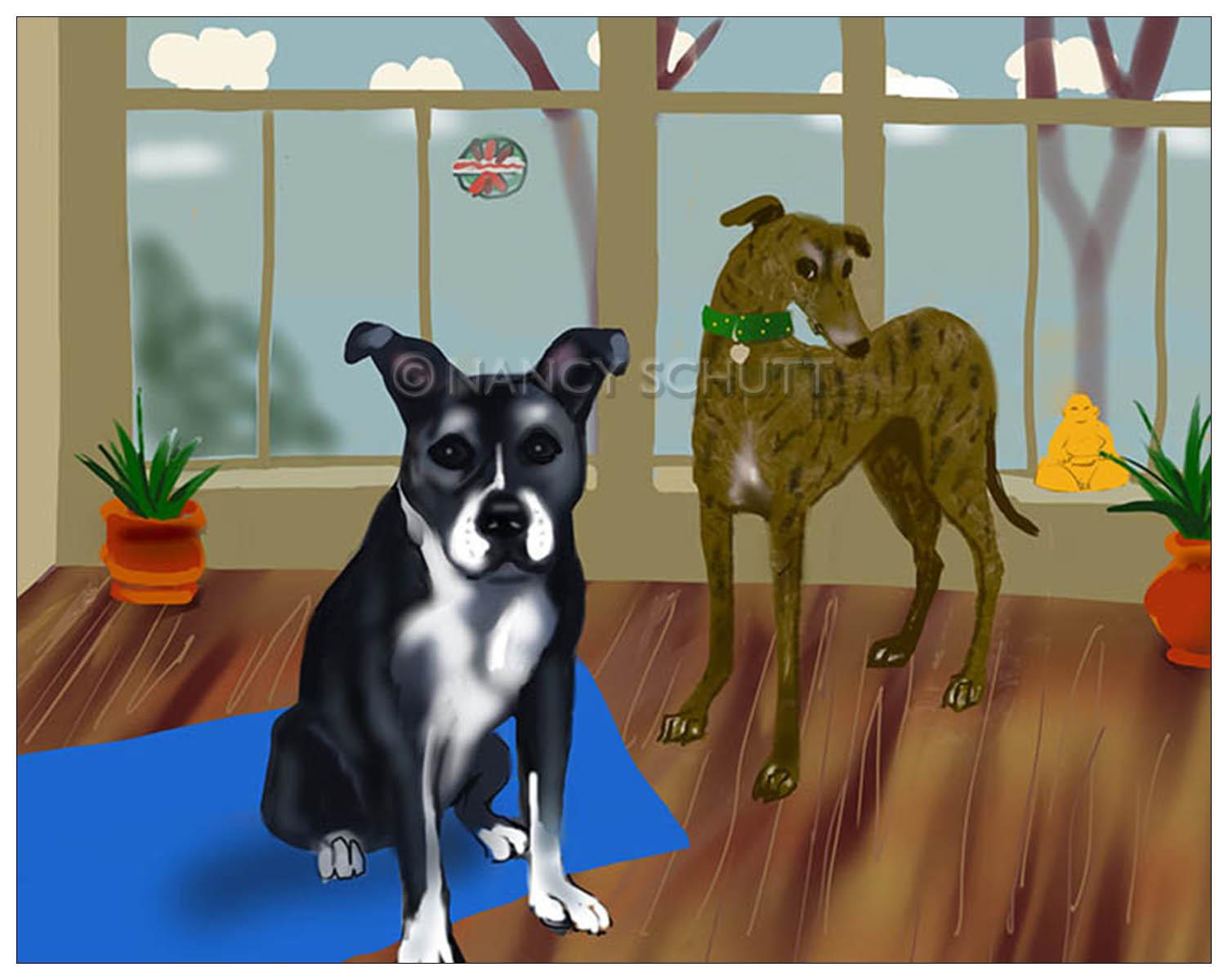 Bella and Silver web.jpg