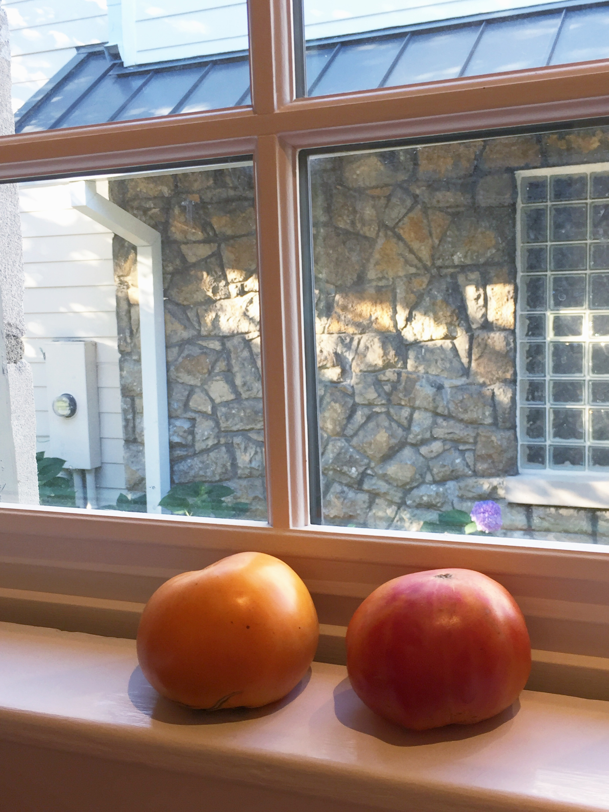 Do you store your tomatoes in the windowsill? They should really be kept out of direct sunlight, but I have a bad habit of putting them there to keep them from getting squished by other produce. Another tip - keep them stem-side down to allow them to conintue to ripen.