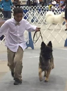 Corbin working with Minion at the Juniors Seminar at Heart of America Dog Show