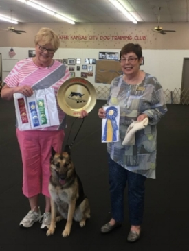 Club member,  Cindy Hartman  and her GSD,  Willa , cleaned up at the trial with High Scoring GSD in the trial and placing in Open A. She only needs one more qualifying score to finish her title.   Cindy Hartman pictured with Willa and Judge  Nancy Cheski.