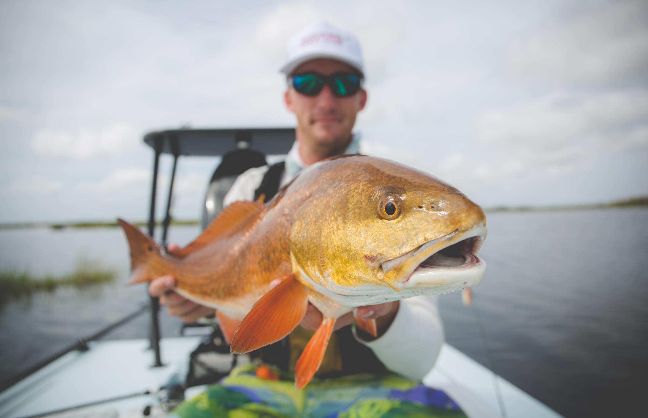 BLOG — Texas Kayak Chronicles