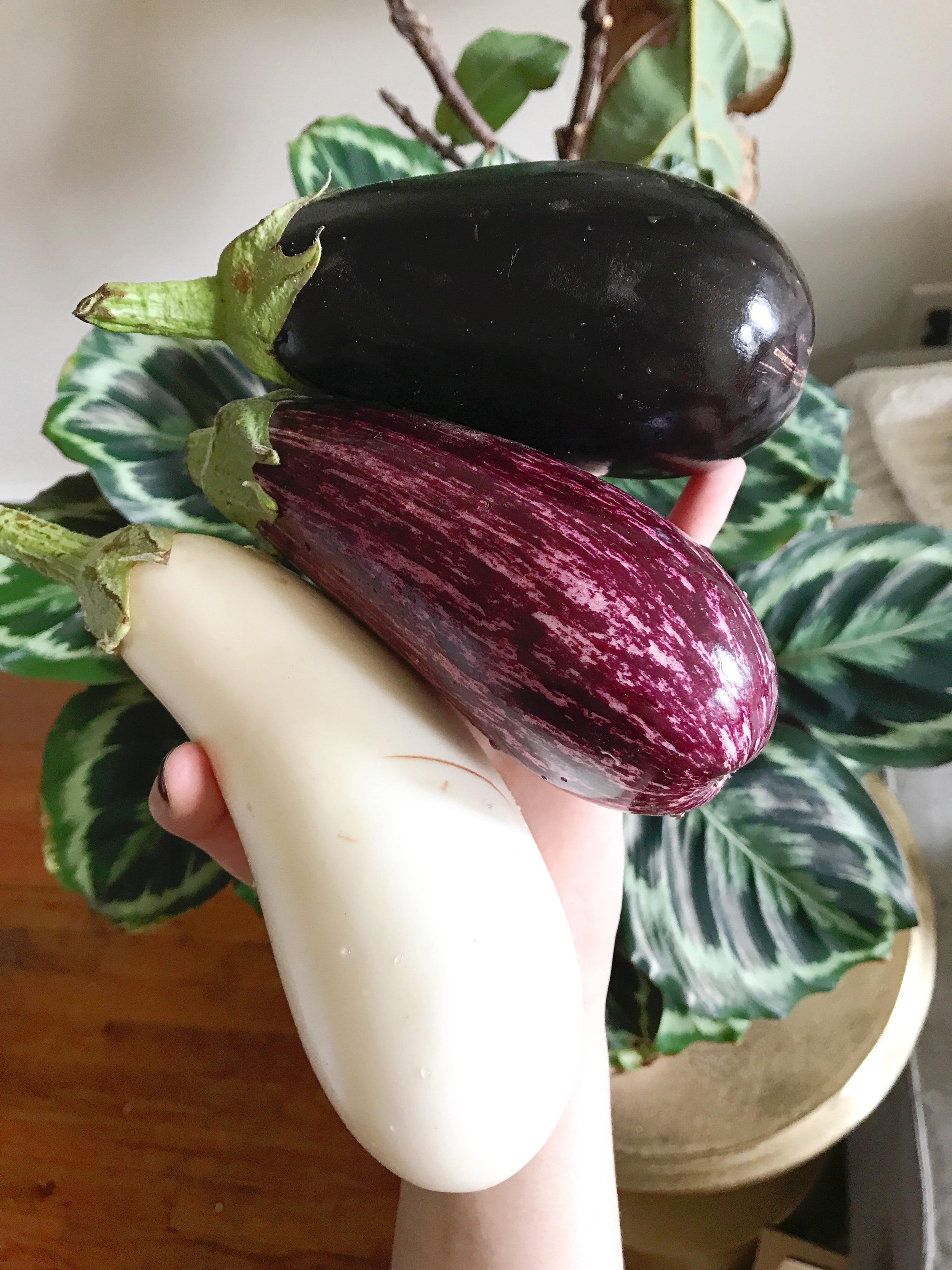 Eggplants-DevinCaskie.jpg