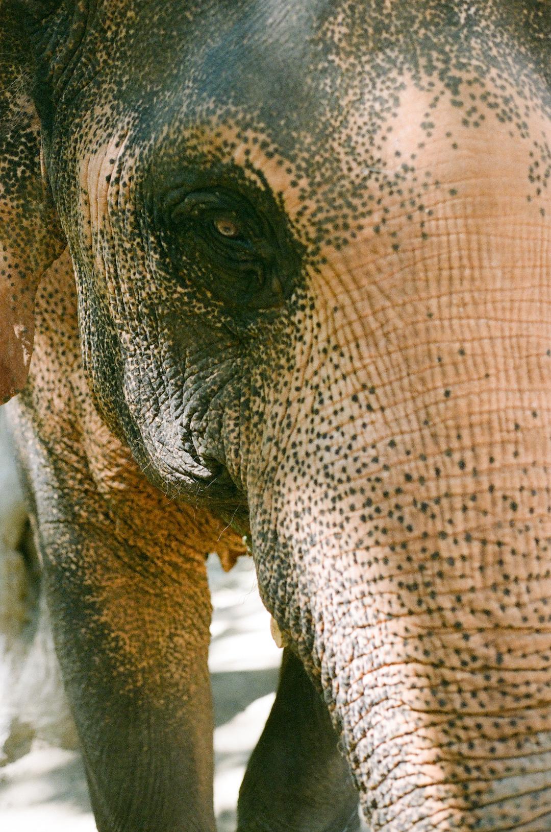 ThailandVietnam-0002.jpg