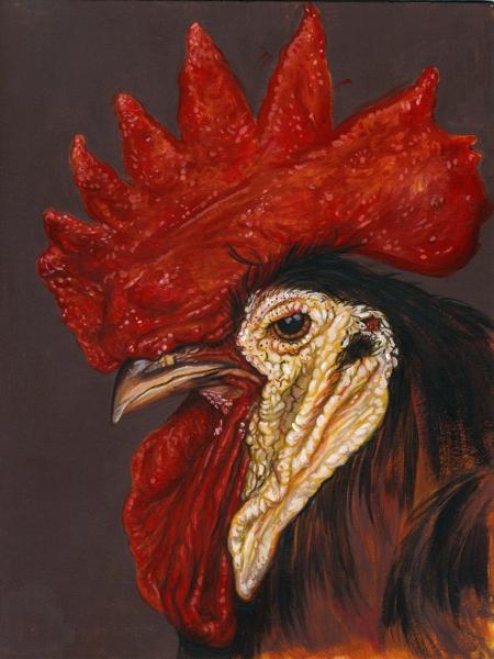 Spanish White Face Chicken