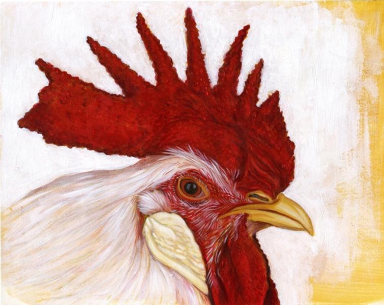 Leghorn-Single Comb White Cockerel
