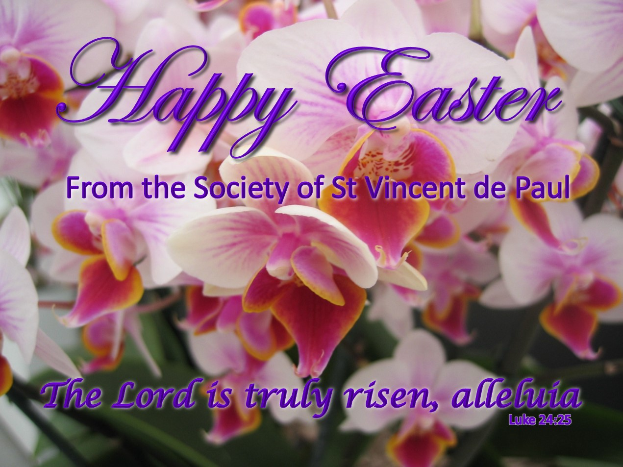 easter-wishes-web.jpg