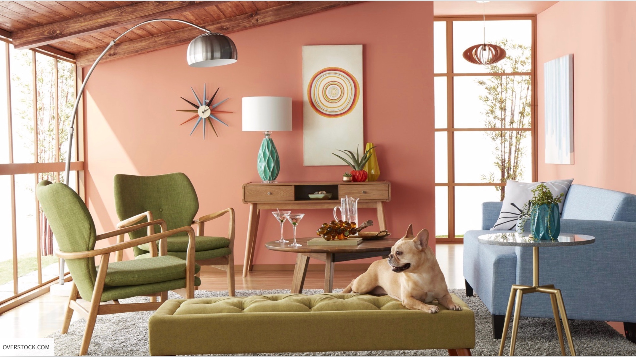 THE ZOE REPORT - Pet-Friendly Decorating Ideas For Animal Lovers