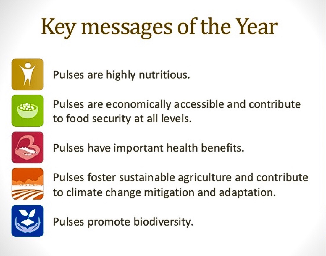 IMAGE SOURCE:http://www.fao.org/pulses-2016/communications-toolkit/promotional-material/en/