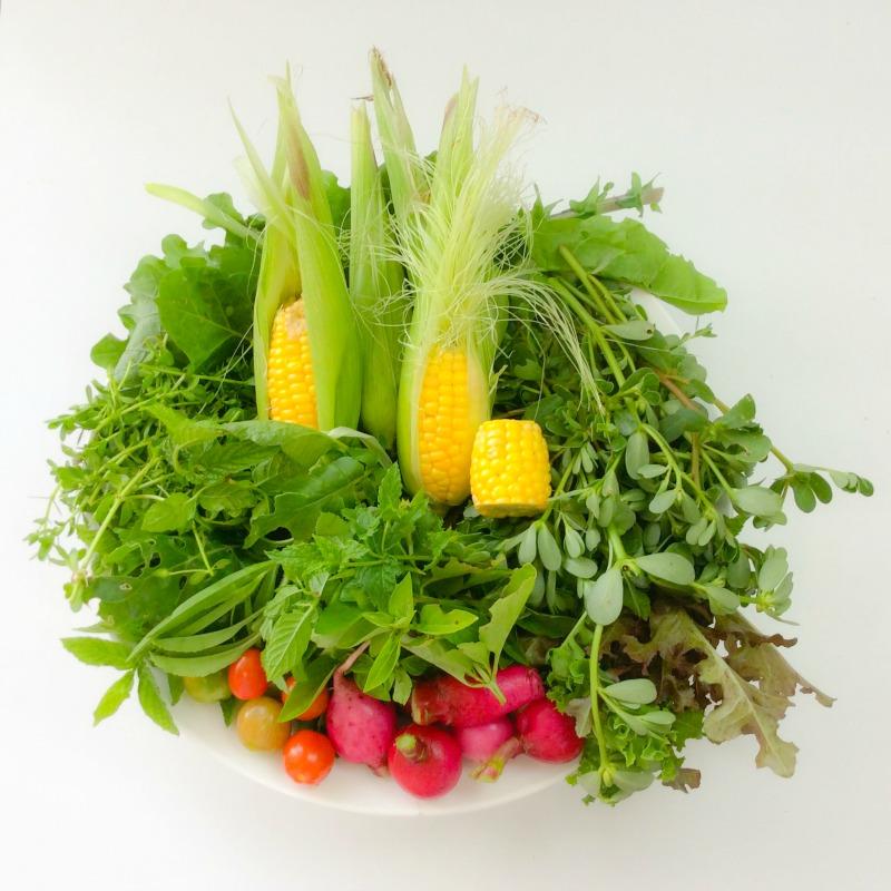 Fruit & Veggies: How Much Should I Eat?