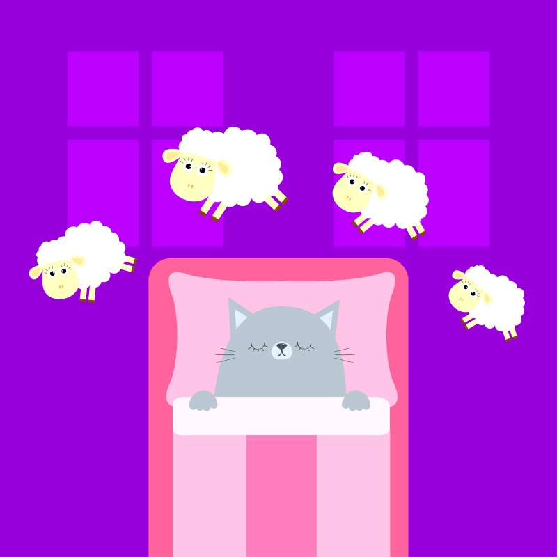 What you NEED to know about SLEEP Part 2: Sleep and Your Health