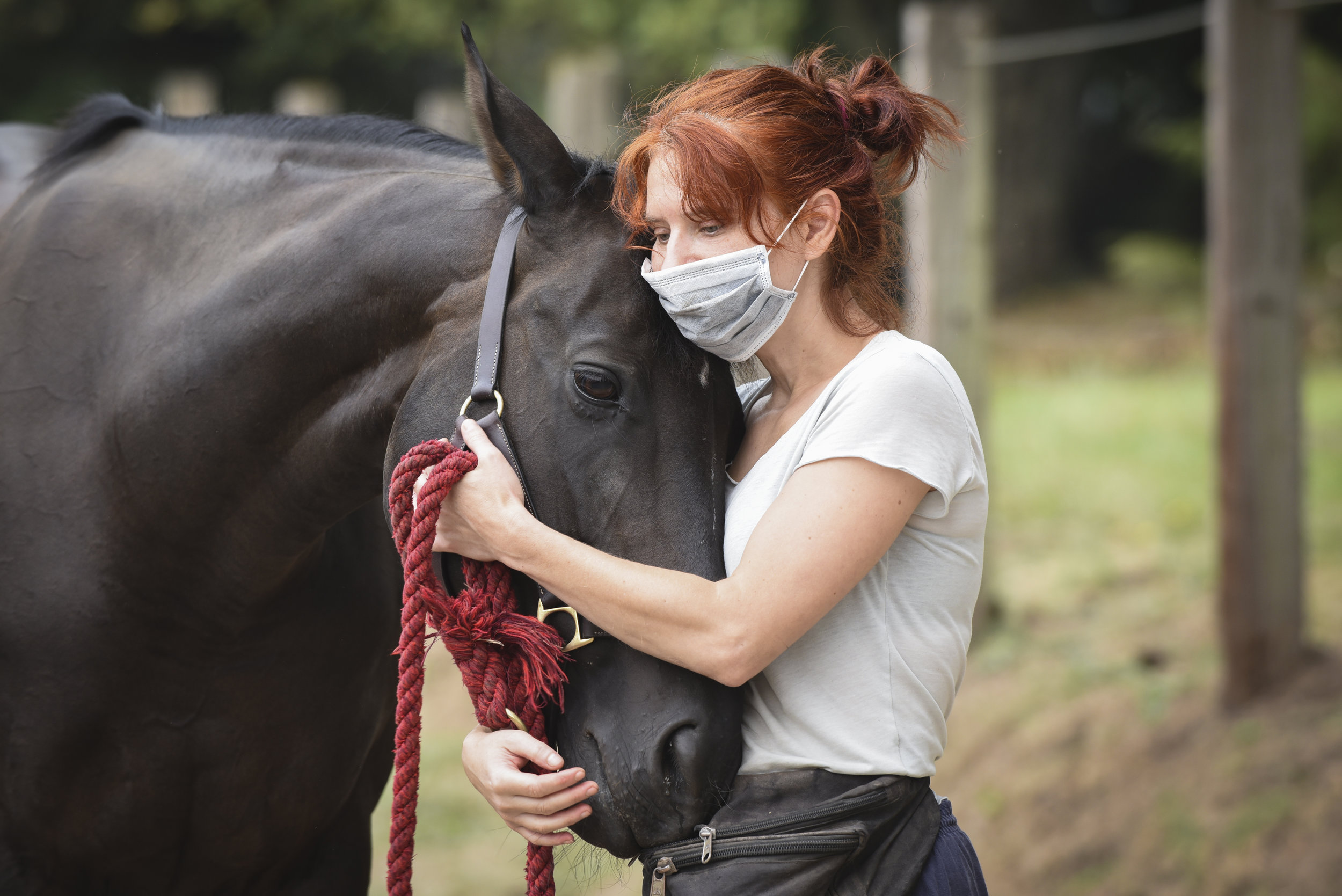 Elizabeth Nicholson shares a moment with her 10-year-old thoroughbred, Saoirse, at the Clark County Fairgrounds, Wednesday September 6, 2017, after all horses at Windy Ridge Farm in Washougal were evacuated because of the Eagle Creek fire threat in Skamania County. Saoirse is one of 22 horses at Windy Ridge Farm that were taken to the Clark County Fairgrounds for safety until further notice. The Eagle Creek fire in the Columbia River Gorge burned 48,573 acres total and temporarily displaced hundreds. The smoke and ash caused many people to wear facemasks when outdoors. (Ariane Kunze/The Columbian)