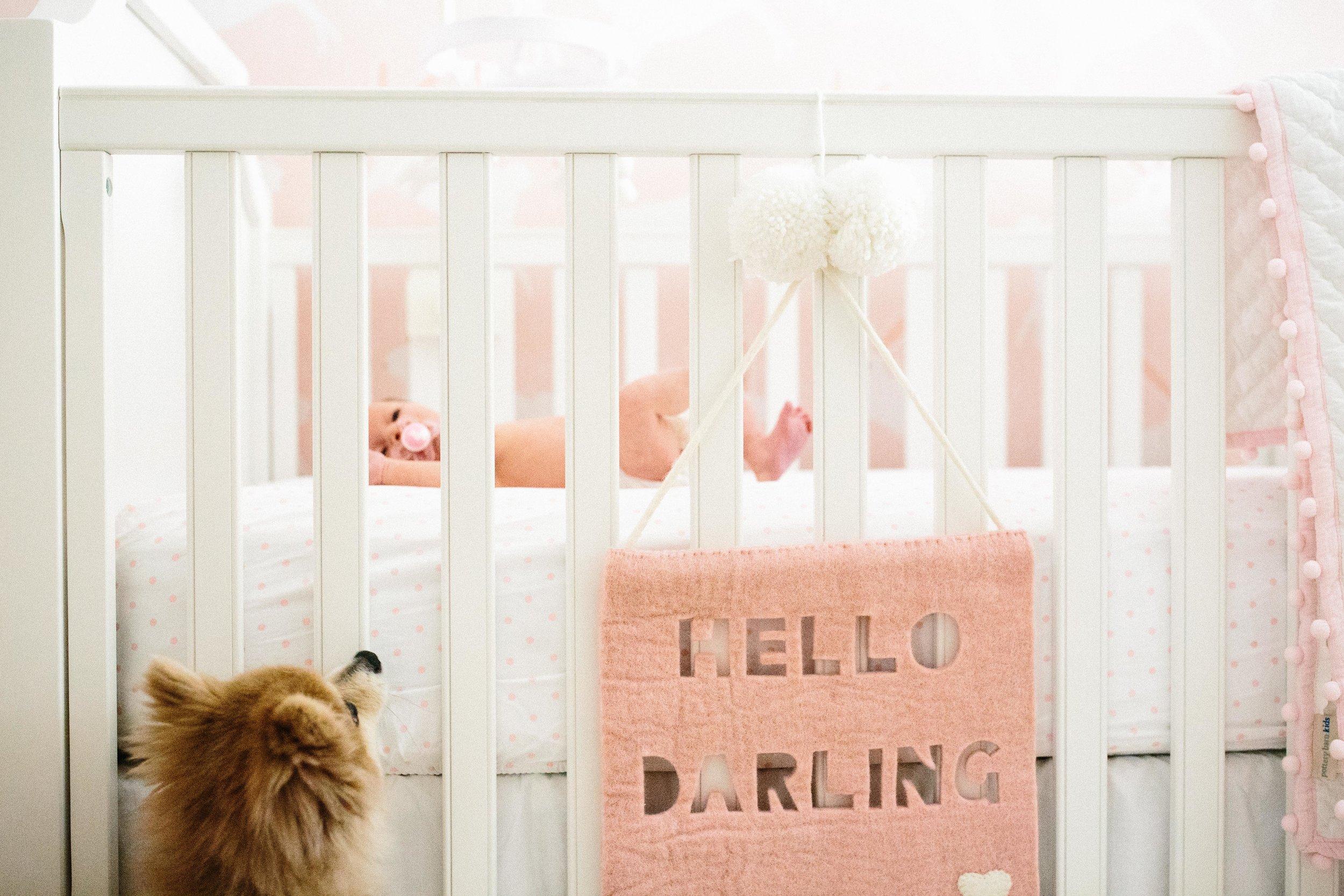 Brentwood Lifestyle Newborn-17.JPG
