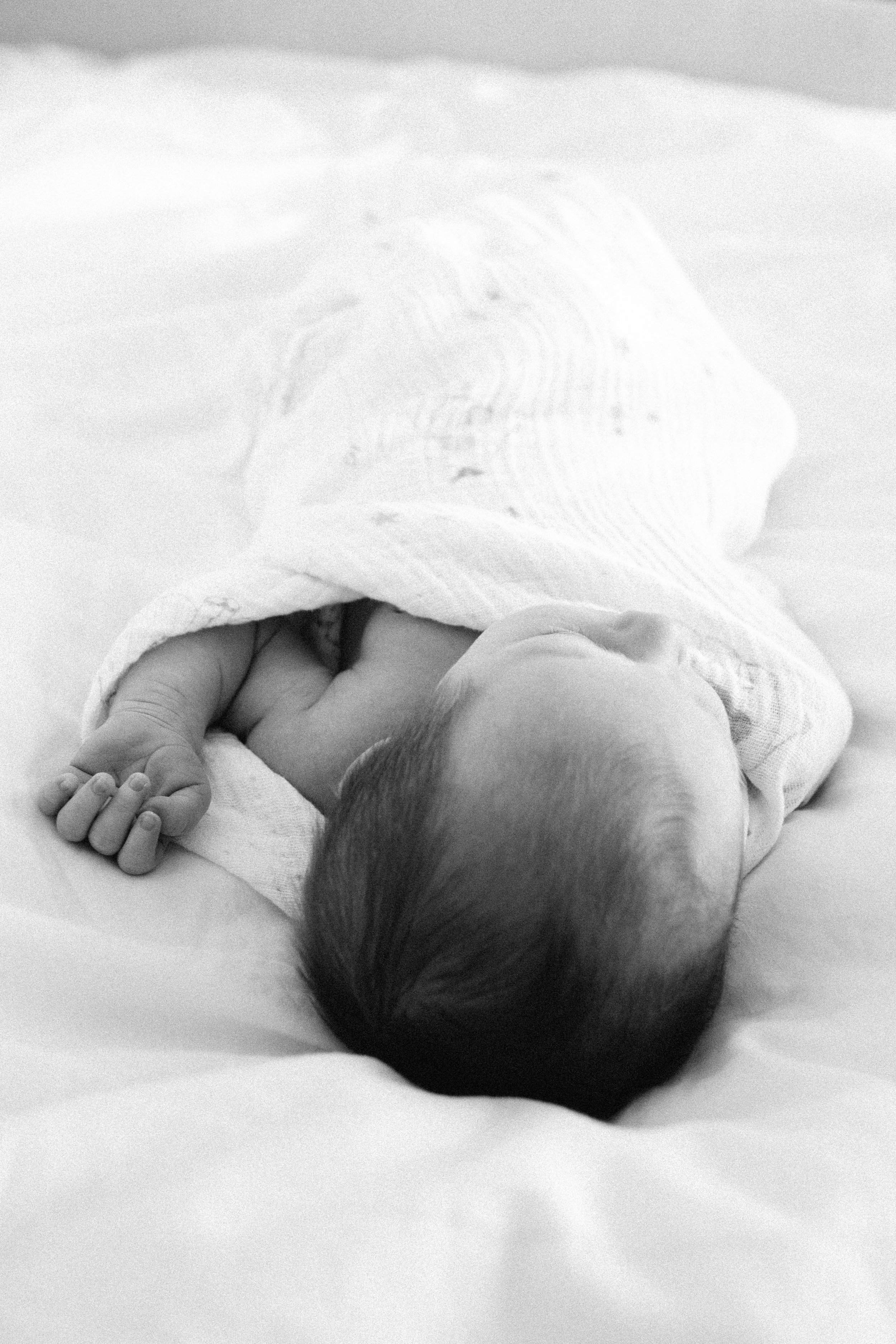 Brentwood Lifestyle Newborn-22.JPG