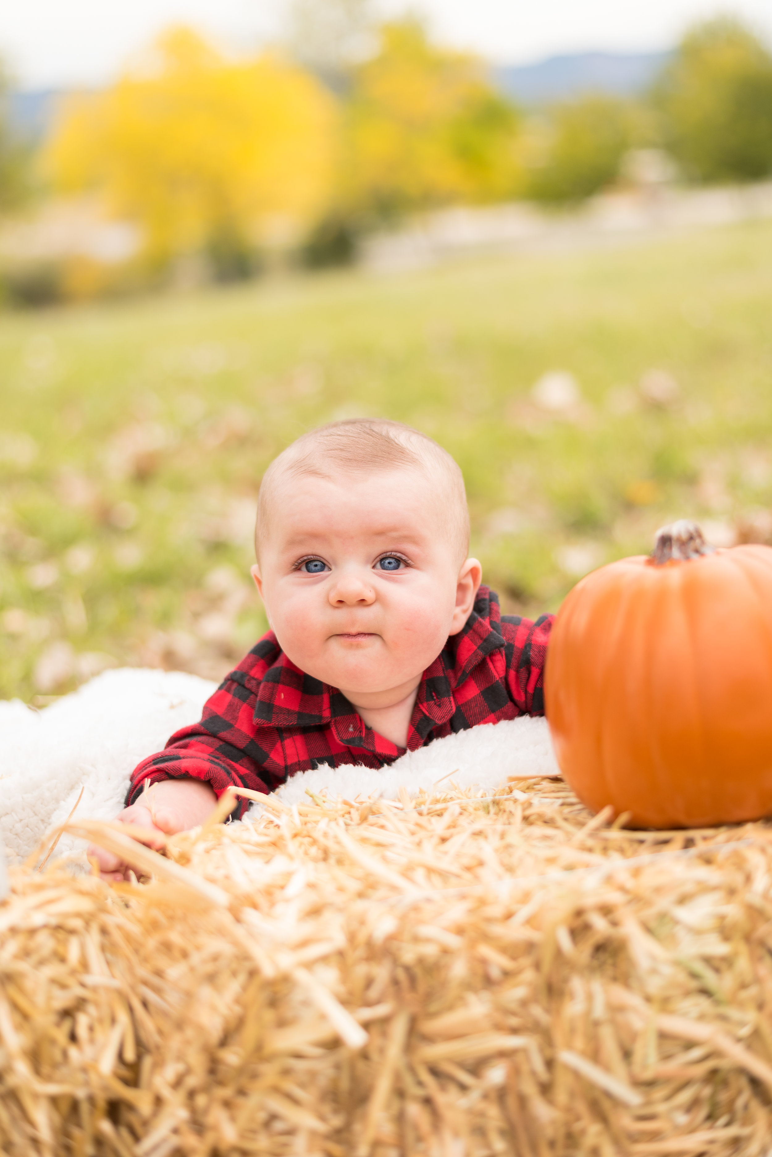 FamilyFallPhotos(10of70).jpg