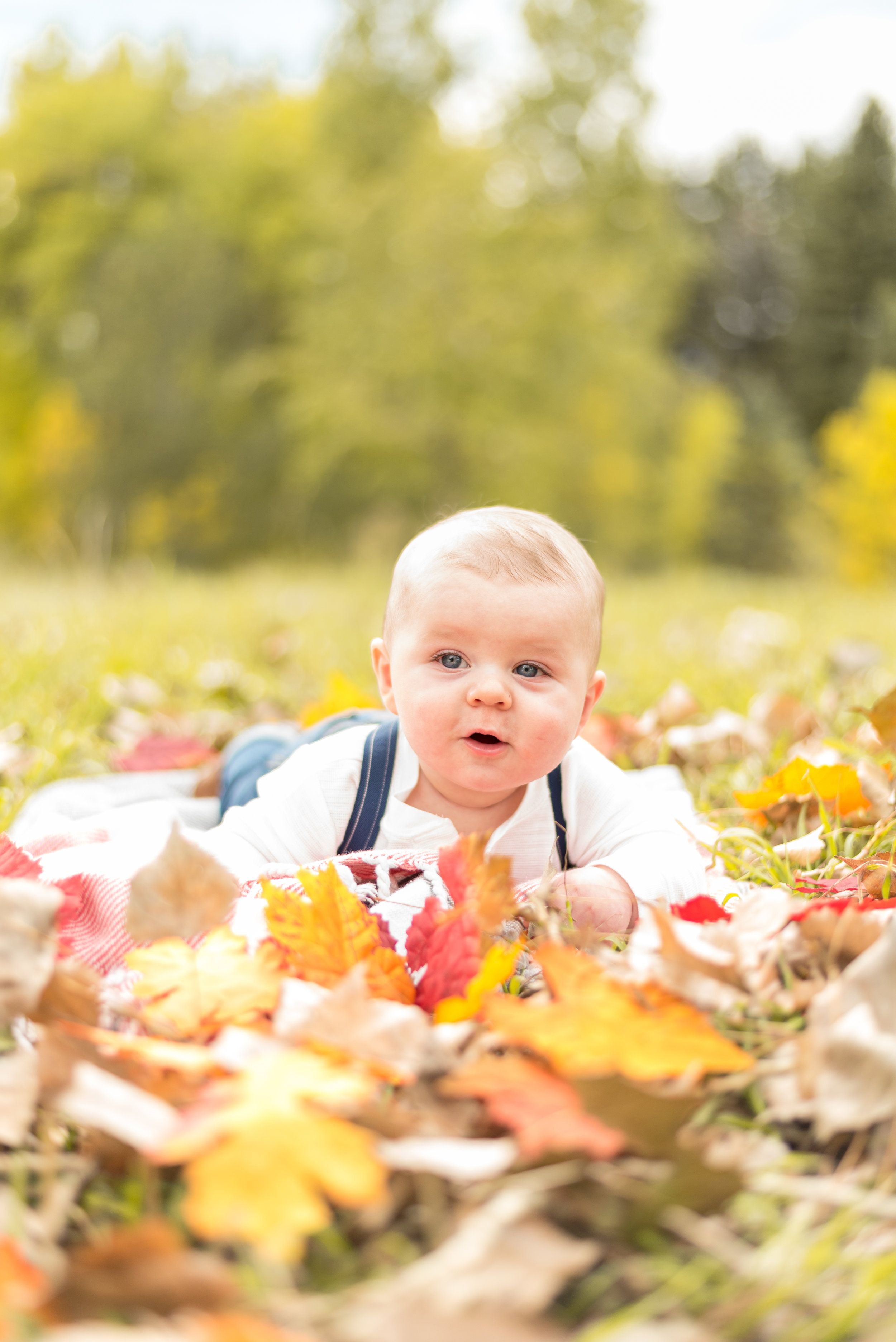 FamilyFallPhotos(30of70).jpg