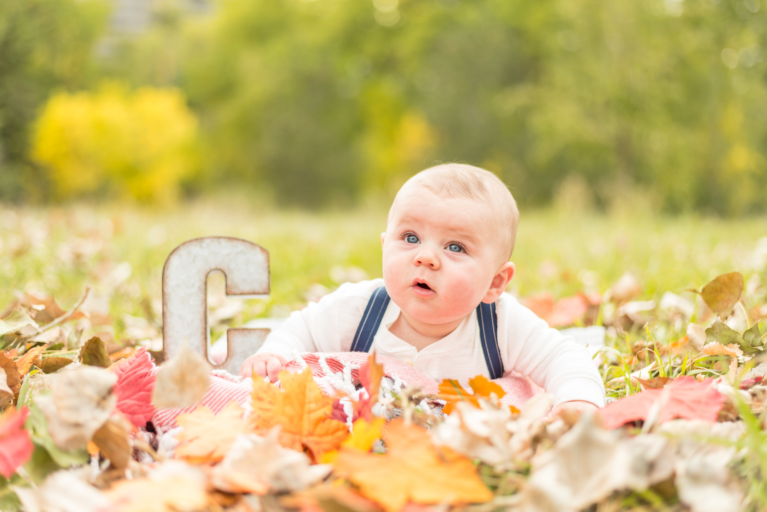 FamilyFallPhotos(39of70).jpg