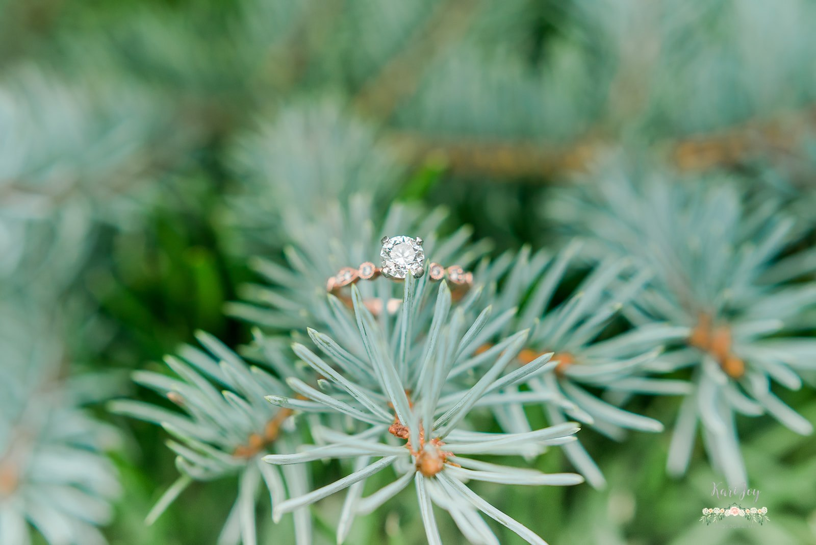 engagement ring, creative ring shots, colorado wedding